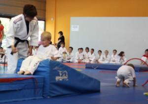 judo-motri-3
